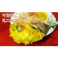 グラタン お弁当 小さなかぼちゃグラタン(35g×6個)簡単調理|fbcreate|05