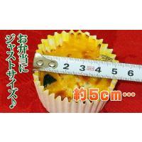 グラタン お弁当 小さなかぼちゃグラタン(35g×6個)簡単調理|fbcreate|06