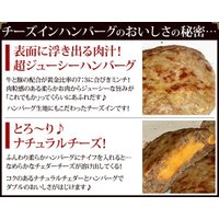 ハンバーグ チーズインハンバーグ (140g×5枚) fbcreate 04