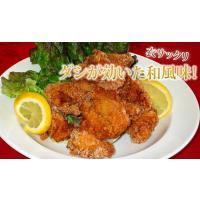 (鶏 とり) (唐揚げ からあげ から揚げ) 若鶏もも竜田揚げ1kg 業務用|fbcreate|03