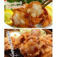 (鶏 とり) (唐揚げ からあげ から揚げ) 若鶏もも竜田揚げ1kg 業務用|fbcreate|04