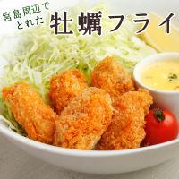 カキフライ (広島牡蠣 冷凍かき 25g×20粒)|fbcreate