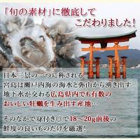 カキフライ (広島牡蠣 冷凍かき 25g×20粒)|fbcreate|03