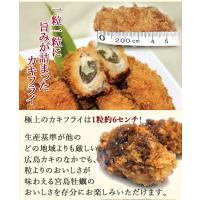 カキフライ (広島牡蠣 冷凍かき 25g×20粒)|fbcreate|04