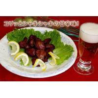 B級グルメ 砂肝 新鮮砂肝焼き(500g) つまみ|fbcreate|03