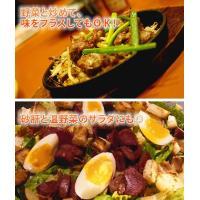 B級グルメ 砂肝 新鮮砂肝焼き(500g) つまみ|fbcreate|05