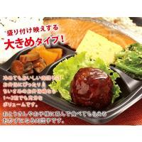 ミートボール 肉団子 お弁当(甘酢6個)|fbcreate|03