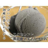 アイスクリーム 業務用 2リットル黒ごまアイスクリーム|fbcreate|03