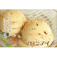 アイスクリーム ラクトアイス 業務用 2リットル明治マロンアイス 秋 スイーツ くり 栗|fbcreate|03