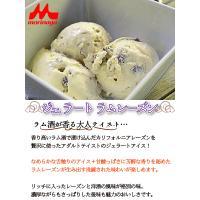 アイスクリーム 業務用 2リットルラムレーズンアイスクリーム|fbcreate|03