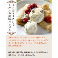 アイスクリーム 業務用 2リットルラムレーズンアイスクリーム|fbcreate|04