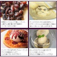 アイスクリーム 業務用 2リットルラムレーズンアイスクリーム|fbcreate|05