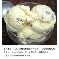 アイスクリーム 業務用 2リットルラムレーズンアイスクリーム|fbcreate|06