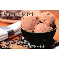 アイスクリーム 業務用 2リットル 明治 チョコ&チョコアイス|fbcreate|03