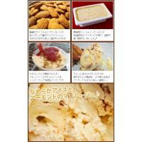 アイスクリーム 業務用 2リットル明治アーモンドクランチアイス|fbcreate|04
