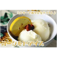 アイスクリーム 業務用 2リットル明治フローズンヨーグルトアイス|fbcreate|03