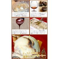 ティラミス イタリア アイスクリーム 業務用 2リットルティラミスアイス|fbcreate|04