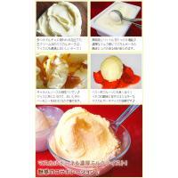 アイスクリーム 業務用 森永 2リットルマスカルポーネアイスクリーム|fbcreate|04
