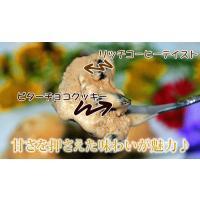 アイスクリーム 業務用 エスプレッソクッキーアイス2リットル|fbcreate|04