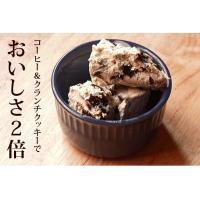 アイスクリーム 業務用 エスプレッソクッキーアイス2リットル|fbcreate|06