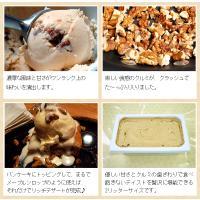 アイスクリーム 業務用 2リットルメープルナッツアイス|fbcreate|05