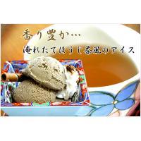アイスクリーム 業務用 森永 2リットル ほうじ茶アイス|fbcreate|03