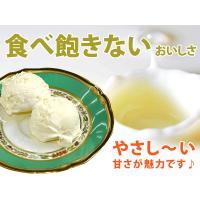 アイスクリーム 業務用 ロイヤル3リットル バニラアイスクリーム|fbcreate|04