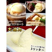 アイスクリーム 業務用 ロイヤル3リットル バニラアイスクリーム|fbcreate|05