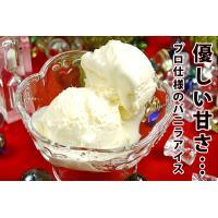 アイスクリーム 業務用 ロイヤル3リットル バニラアイスクリーム|fbcreate|06