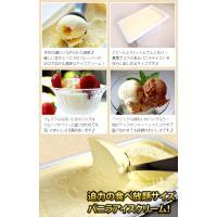 アイスクリーム 業務用 明治4リットルバニラ|fbcreate|04
