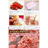 アイスクリーム 業務用 明治4リットルストロベリーアイスクリーム|fbcreate|04