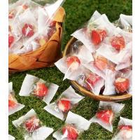 敬老の日 プレゼント  ギフト 80代 孫 から お菓子 70代 祖父 祖母 スイーツ 送料無料 アイス 贈り物 お祝い 国産 春摘み苺アイス (30粒)|fbcreate|09
