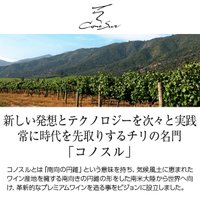 赤ワイン チリ コノスル ピノノワール オーガニック 2018 750ml wine|felicity-y|02