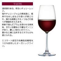 赤ワイン チリ コノスル ピノノワール オーガニック 2018 750ml wine|felicity-y|05