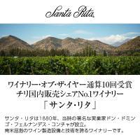 白ワイン チリ サンタ リタ 120(シェント ベインテ) シャルドネ 2018 750ml wine|felicity-y|02