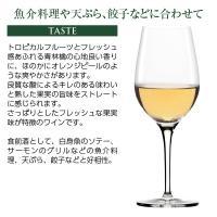 白ワイン チリ サンタ リタ 120(シェント ベインテ) シャルドネ 2018 750ml wine|felicity-y|05