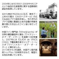 赤ワイン チリ サンタ リタ 120(シェント ベインテ) メルロー 2016 750ml wine felicity-y 03