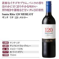 赤ワイン チリ サンタ リタ 120(シェント ベインテ) メルロー 2016 750ml wine felicity-y 04