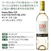白ワイン チリ サンタ リタ 120(シェント ベインテ) ソーヴィニヨン ブラン 2019 750ml wine|felicity-y|04