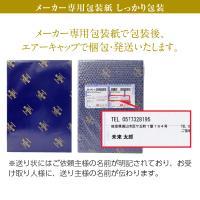 ビール ギフト サントリー ザ プレミアム モルツ ビールセット プレモル BEC3P しっかり包装+短冊のし お中元 お歳暮 beer|felicity-y|02