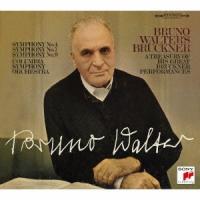 ブルックナー:交響曲集&ワーグナー:管弦楽曲集(完全生産限定盤) / ワルター (CD)