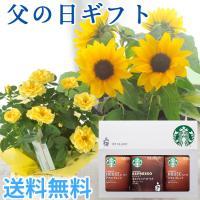 あすつく \まだ間に合う/ 父の日 2021 花 プレゼント 花とコーヒー 選べる花鉢とスターバックスコーヒーのセット 鉢植え ギフト セット FKPP