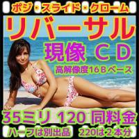 リバーサルフィルム現像+CDつき(16B)