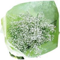 いつもは名脇役のかすみ草を主役にした大きな花束です。 真っ白なカスミ草の花束は見つめていると、すい込...