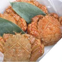 【北海道産】浜茹で毛がに(1尾、380g〜400g) 最高ランクの堅ガニを急速冷凍で美味しさを封じ込...