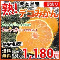 ■商品情報  訳ありデコみかん(デコポンと同品種) 熊本県産  ■内容量  1.5kg(S〜2Lサイ...