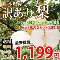■名称 訳あり梨  ■産地 熊本県産  ■内容量 1セット 1.2kg(約3玉前後〜約5玉前後 サイ...
