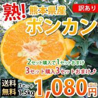 ■商品情報  訳ありポンカン 熊本県産  ■内容量  1.5kg(S〜2Lサイズ混合)   ■賞味期...
