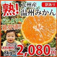 ■商品情報  訳あり温州みかん  ■内容量  10kg(S〜2L)サイズ混合   ■賞味期限  生鮮...