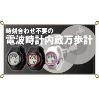 (山佐 YAMASA ヤマサ)ウォッチ万歩計 WATCH MANPO TM-500